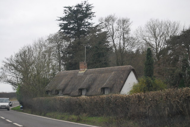 Thatched cottage by the A31