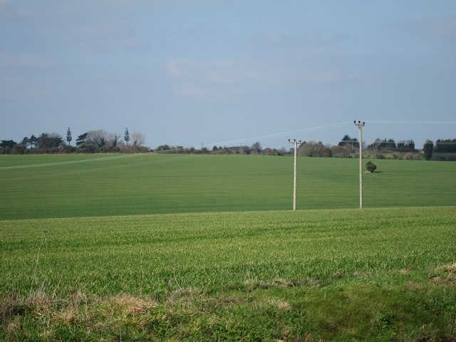 Crop fields south of Eastry