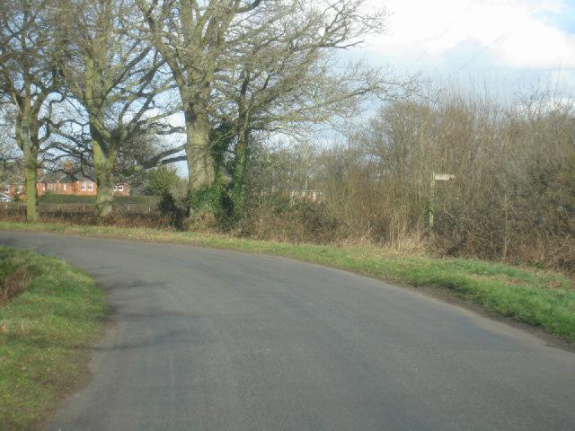 Pale Lane