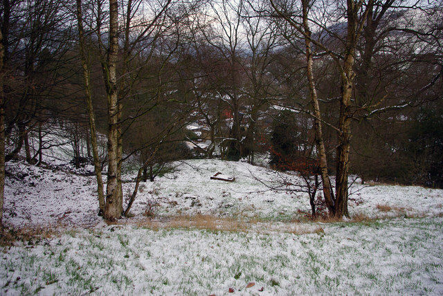 Open area within Martin Wood, Mytholmroyd