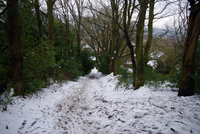 Footpath from Daisy bank towards Nest Lane, Mytholmroyd