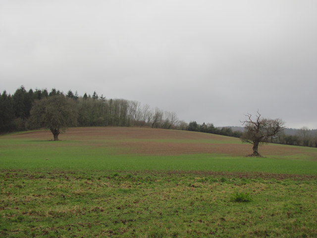 View across field on Rhymney River Circular walk