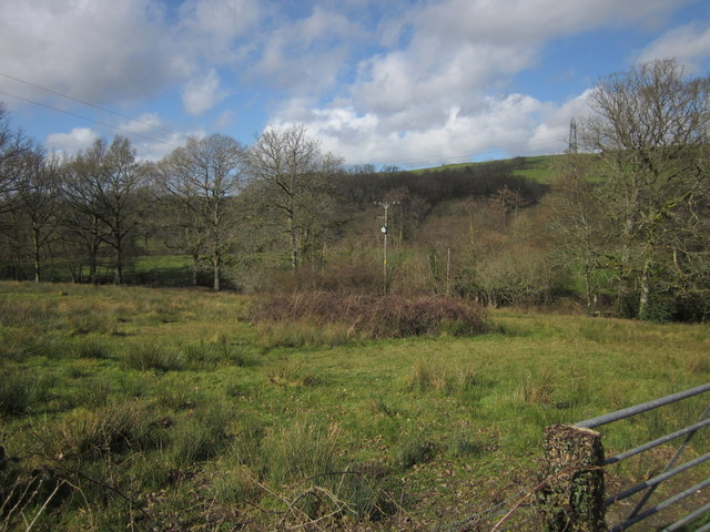Meadow near Higher Dayles