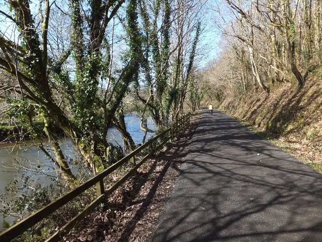 Camel Trail beside River Camel in Gaff Wood