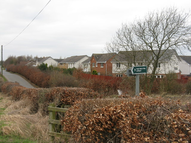 Housing on the edge of Bo'ness