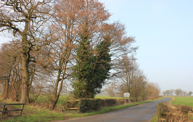 Swettenham/Lower Withington parish boundary, Long Lane