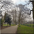 SJ8195 : Seymour Park by David Dixon