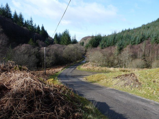 Mixed woodland in Glen Lonan