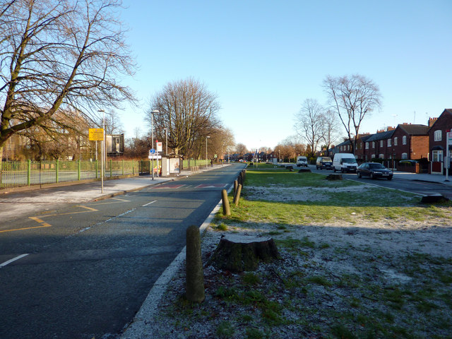 Central reservation of Mauldeth Road West near Chorlton Park Primary School, Chorlton