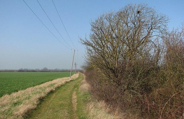 Farm track near Rectory Farm