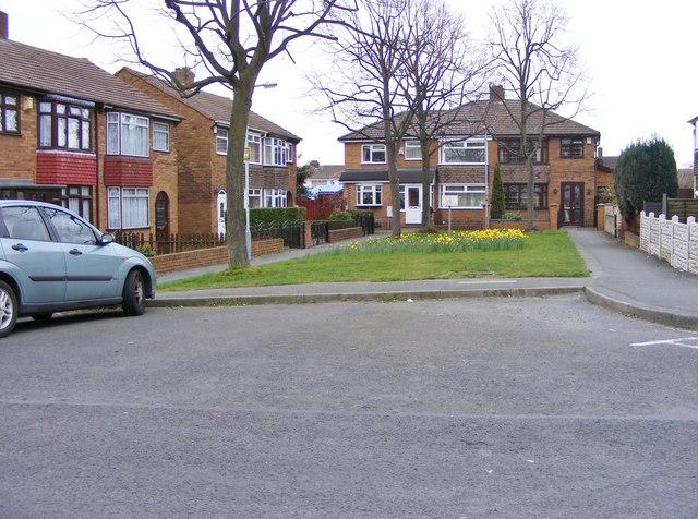 Stokes Avenue