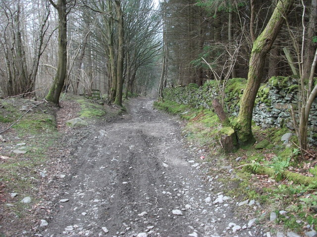 Looking downhill on Allt y Badi