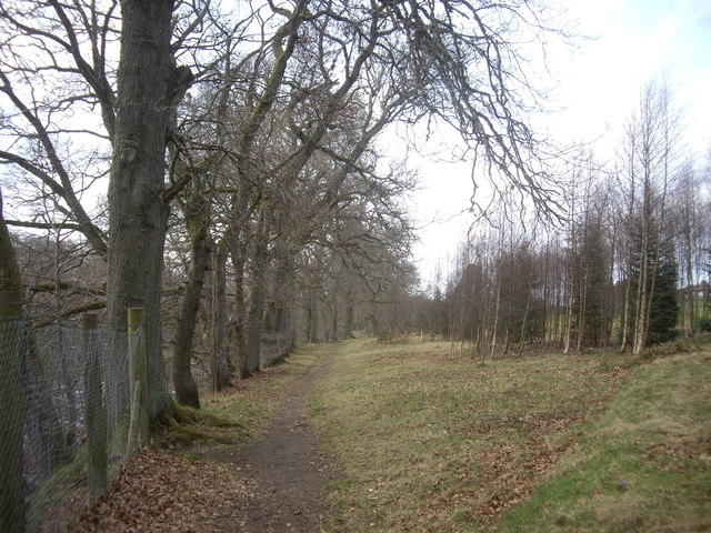 Riverside path, Banchory