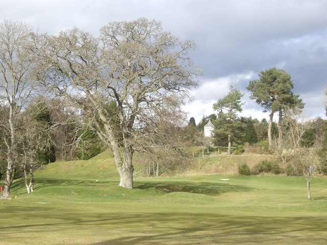 Mature trees on Banchory golf course