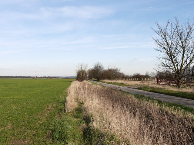 Farm road north-east of Crowle