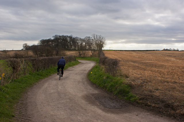 A cyclist negotiates the bends in Within Way