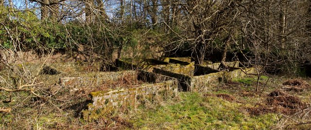 Remains of walled garden