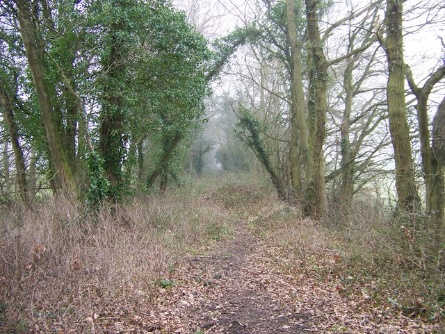 Looking SE along the Crab & Winkle Way