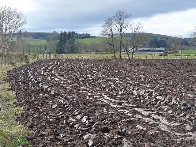 Ploughed field and Kinnaird Farm