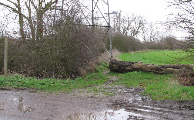 Footpath entrance to field