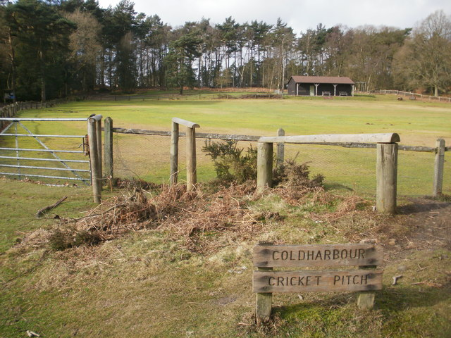 Coldharbour Cricket Pitch