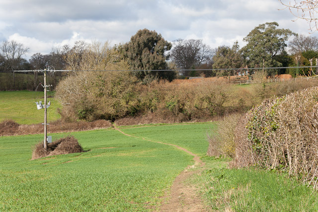 Footpath going towards Roke Farm
