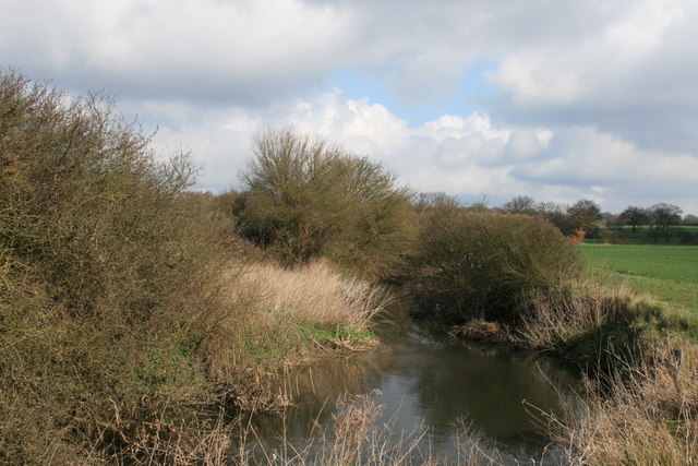 The River Wid, downstream of Butts Way