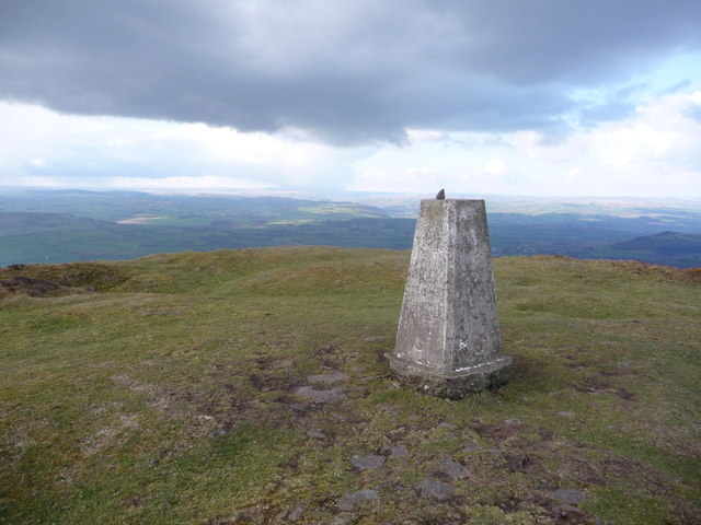 Mynydd Troed's summit trig
