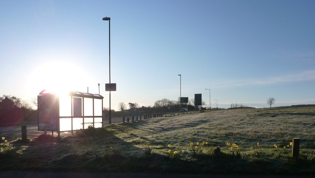 Bus stop at Churston Common, Torbay Ring Road