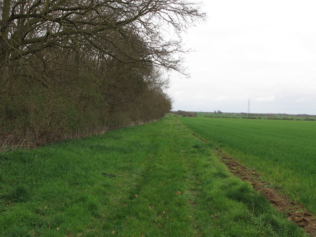 Boundary with Curry's Copse