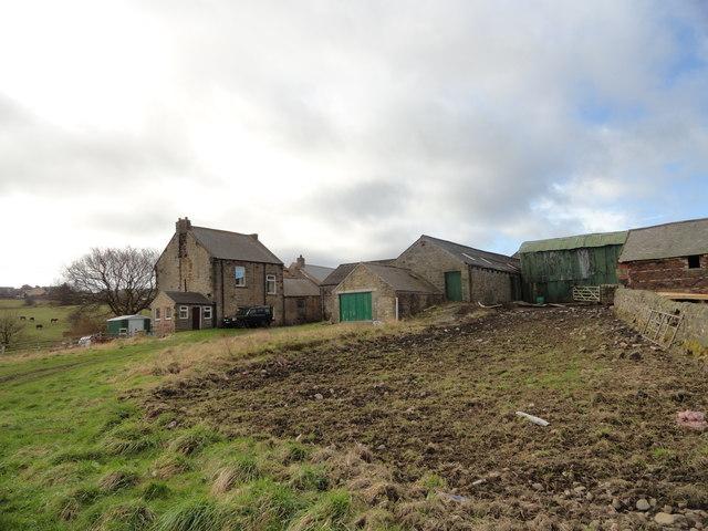 Pea Farm