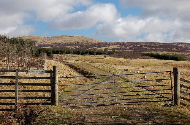 Footpath to Glenshee above Dirnanean