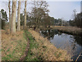 TL7987 : Path along Little Ouse River by Hugh Venables