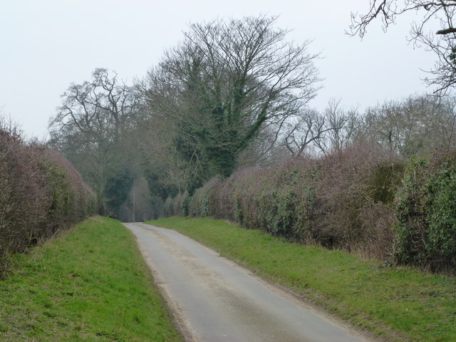 Country lane near Waterden Farm, Norfolk