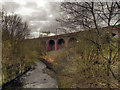 SD8500 : River Irk, Smedley Viaduct by David Dixon