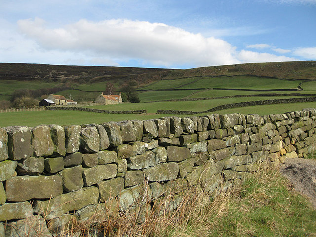 Drystone wall along Daleside Road
