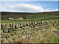 SE6797 : Drystone wall along Daleside Road by Pauline Eccles