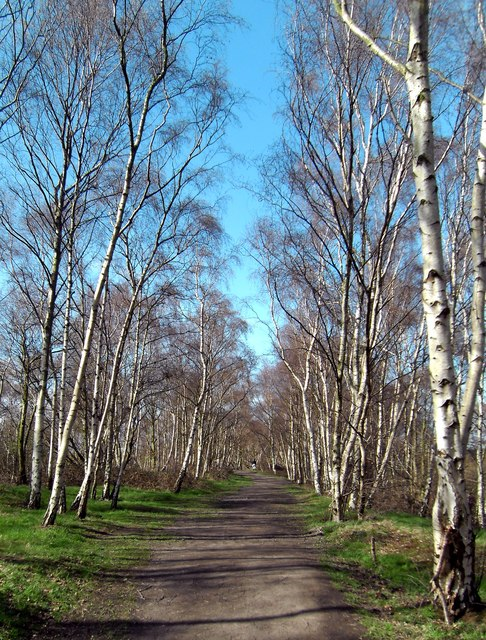 Fairburn Ings Footpath