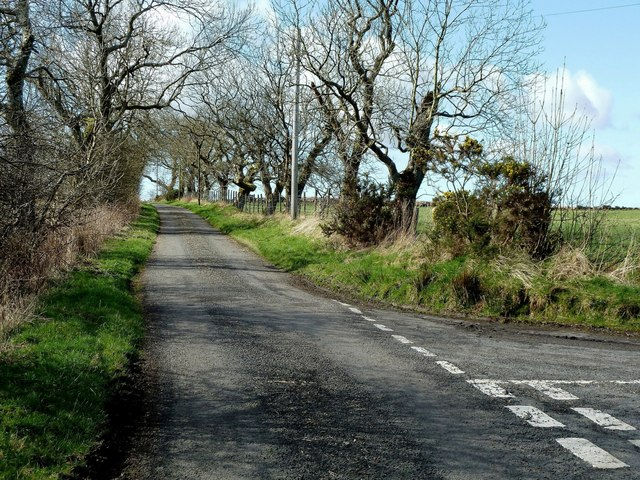 Minor Road Near Straiton