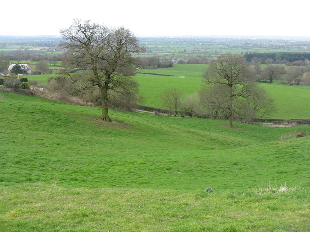 Fields at Higher Burwardsley