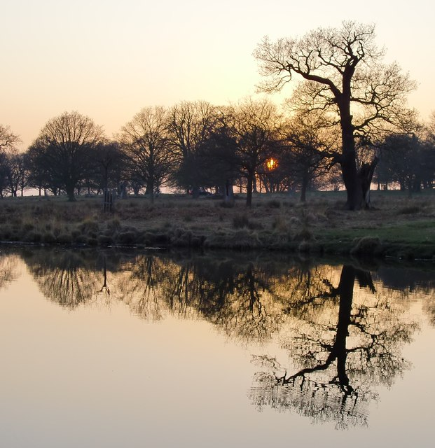 Sunset at White Ash Pond, Richmond Park
