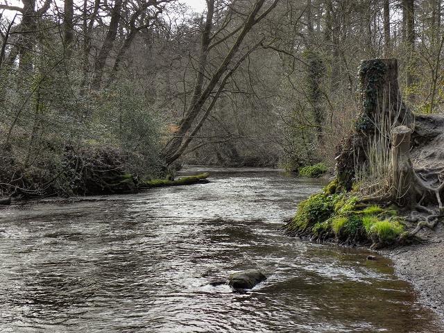 River Bollin, Styal Country Park