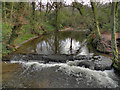 SJ8283 : River Bollin at Giant's Castle Rocks by David Dixon