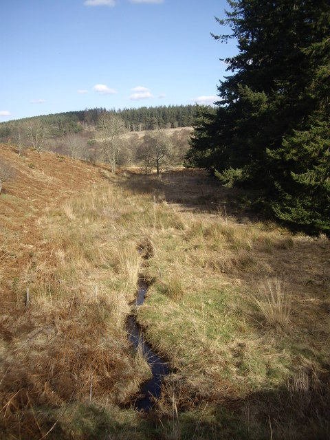 Downstream Bandodle Burn