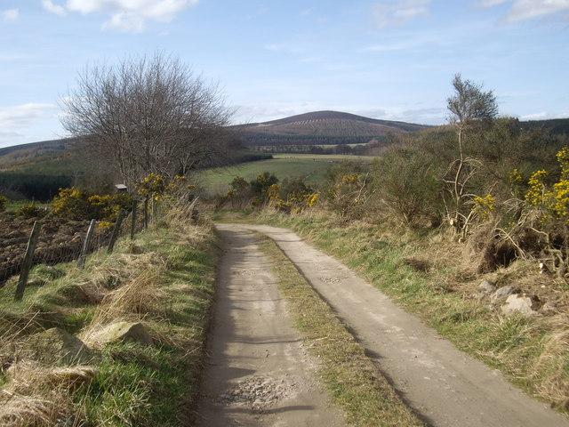 Backhill corner