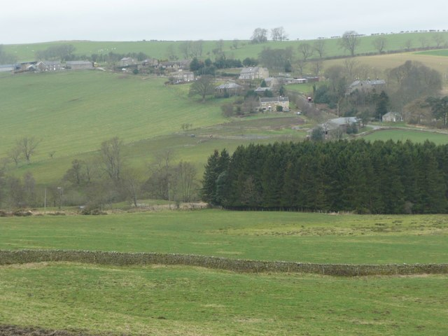 Looking across Edlingham Burn