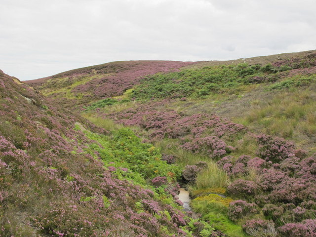 Potter Burn above Ravens Crags