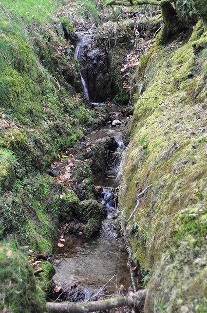 West Somerset : Small Stream