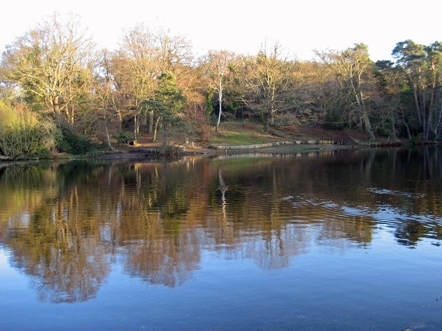 Middle Fishpond, Keston Common