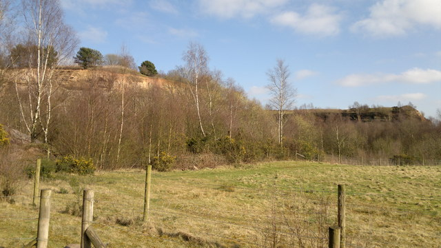 Nature taking over at north end of Croxden Quarry